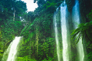 A view of the part of Sekumpul Waterfall in the jungle, Bali, Indonesia
