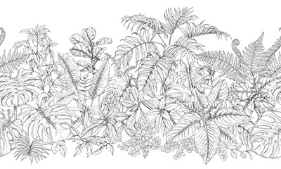 Tropical Plants Line Horizontal Pattern