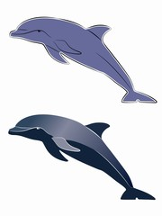 silhouette dolphin, vector draw
