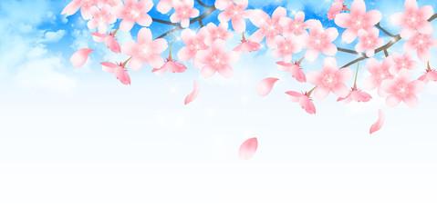 桜 春 学校 背景