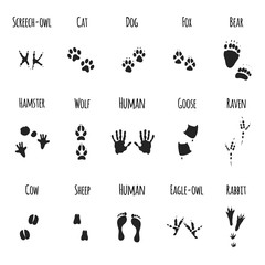 animal paws black prints - vector icons set