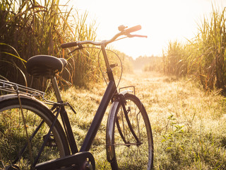 Fotorolgordijn Fiets Bicycle ride outdoor Summer meadows field sunrise Vintage tone