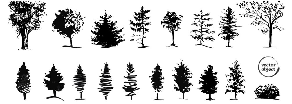 Ink illustration of growing trees with some grass.