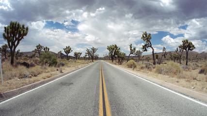 American Desert Highway through Joshua Tree National Park, California