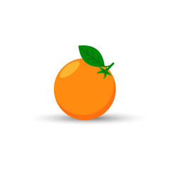 Orange fruit with shadow isolated on white background vector illustration