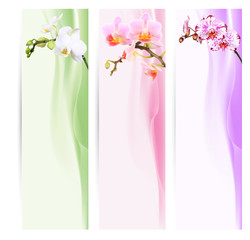 Foto auf Acrylglas Orchideen Banner, Lesezeichen mit Orchideen