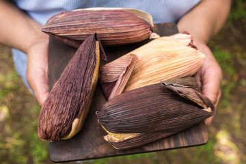 holding hands - tamales - regional food from south america