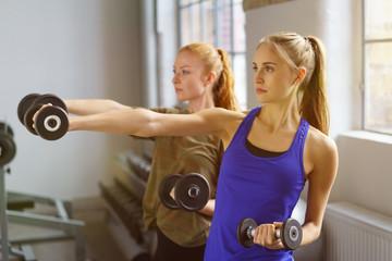 frauen trainierten im fitnessstudio mit gewichten