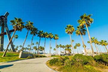 Venice beach on a sunny day