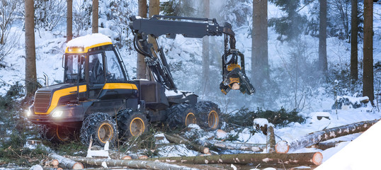modern forestry machine in a winter forest