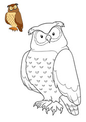 Coloring book, Owl