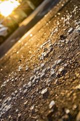 Pieces of broken glass sprayed across asphalt