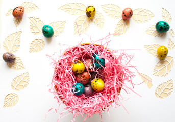 Easter color quail eggs on a white background,.leaves cut from p
