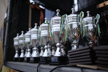 Silver champion trophies lined up in rows