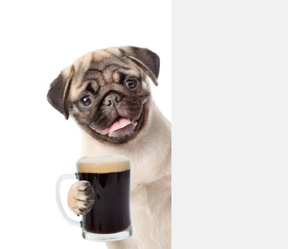 Dog holding beer peeking from behind empty board. Isolated on white