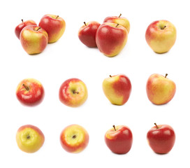 Ripe red and golden jonagold apple set