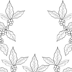 coffee leaf, bean hand drawn template,  sketch illustration, frame