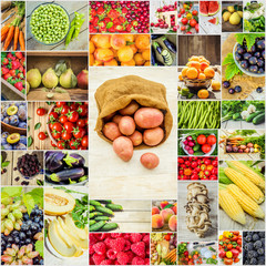 collage of fruits and vegetables in one photo.