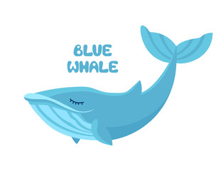 Vector cartoon cute blue whale isolated on white background