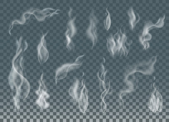 Garden Poster Smoke Realistic cigarette smoke waves or steam on transparent background.
