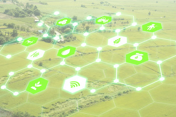 Wall Mural - Internet of things(agriculture concept),smart farming,industrial agriculture.Farmer use augmented reality technology to control ,monitor and management in the field
