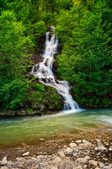 waterfall comes out of a hillside in forest