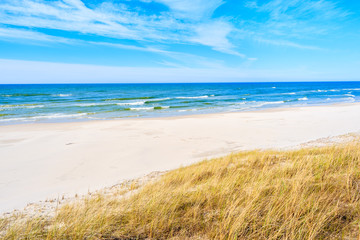 White sand and grass dune on Debki beach, Baltic Sea, Poland