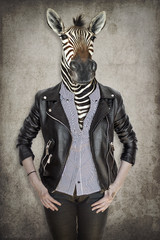 Papiers peints Animaux de Hipster Zebra in clothes. Concept graphic in vintage style.