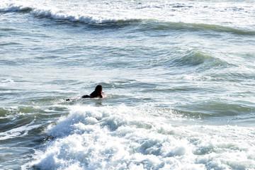 Deporte que aprovechan para surcar las olas.
