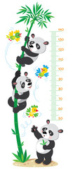 Meter wall with bamboo tree and funny pandas