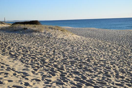 Sandy beach near Comporta, Alentejo, Portugal