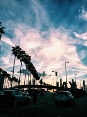 LAX Sunset