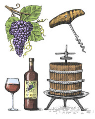 Press for grapes sketch corkscrew wine bottle and glass in vintage style, engraved woodcut illustration