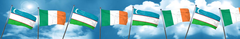 Uzbekistan flag with Ireland flag, 3D rendering