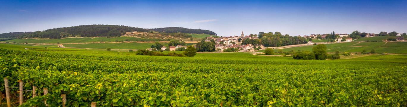 paysage bourguignon