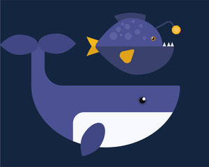 Vector whales illustration of marine mammal.