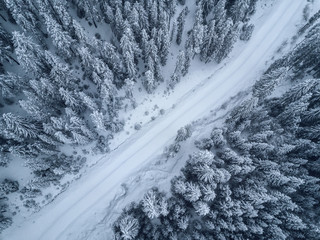 Fototapeten Luftaufnahme bird's eye, aerial view of forest covered with snow .