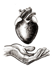 Hand with human heart