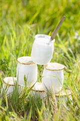 yaourts empilés dans l'herbe