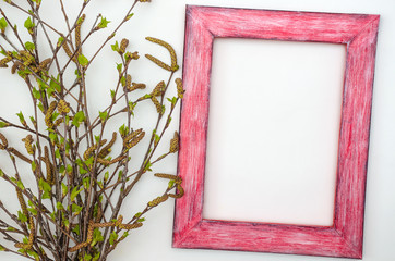 Spring Birch branches with young leaves on a white background with red picture frame