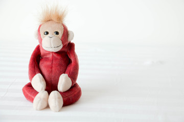 Cute monkey seat on white fabric