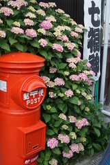 紫陽花と郵便ポスト