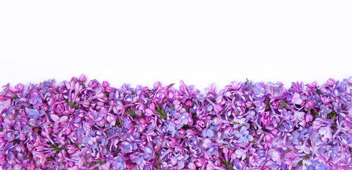 Decorative background of fresh lilac flowers