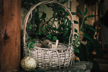 Basket with sea shells as decoration object from Crete island, Greece