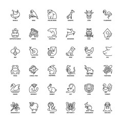 Outline icons. Animals