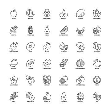 Outline icons. Fruit
