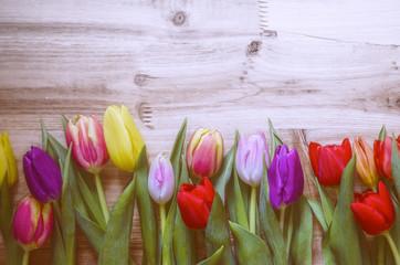 Tulpen vor Holz, Hintergrund