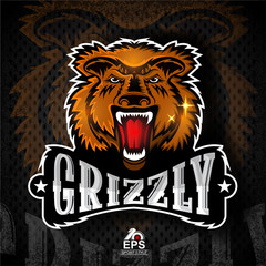 Beast face from the front with bared teeth. Logo for any sport team grizzly