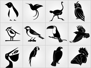 Set of Birds icons. Penguin, Bird, Pelican, Humming Bird, Owl,  Eagle, Cock, Rooster, Toucan, Ostrich, Raven, Great Tit  and Parrot icons