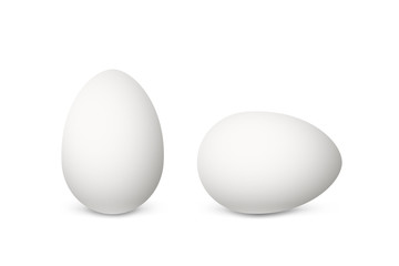 Two vector realistic white eggs. Isolated eggs on white background.